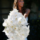 130x130 sq 1427224025146 diamondcustomfloralwhitephalenopsisbouquet