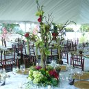 130x130 sq 1358369948143 mariasweddingreception2008design