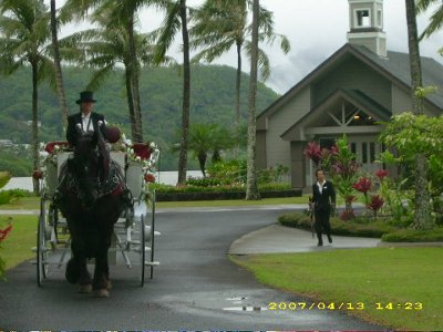 Honolulu Horse and Carriage