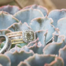 130x130_sq_1389894478593-ringssucculent