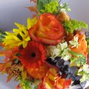 130x130_sq_1319423365101-mountainsandannsflowers117