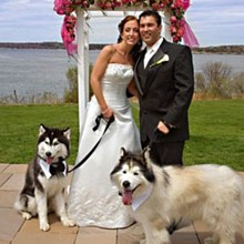 220x220 sq 1311883055707 petweddings