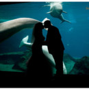 130x130 sq 1395712593506 atlanta wedding photographer georiga aquarium wedd