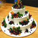 130x130 sq 1308357215090 cakebrochure2