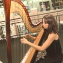 130x130 sq 1445687751058 harp3 copy