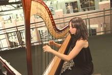220x220 1445687751058 harp3 copy