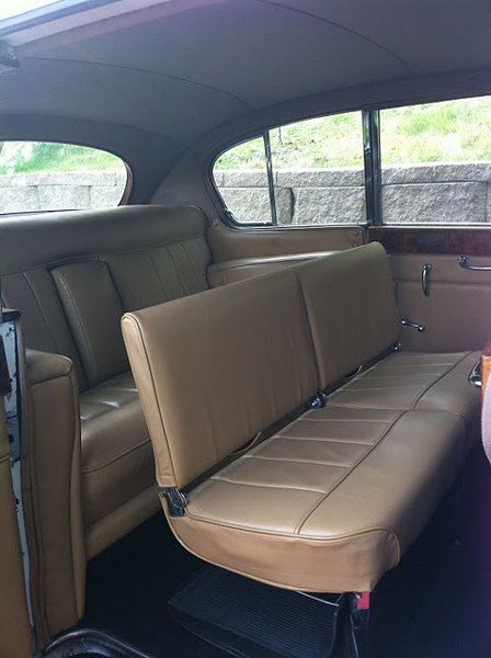 photo 10 of Excellent Limousine