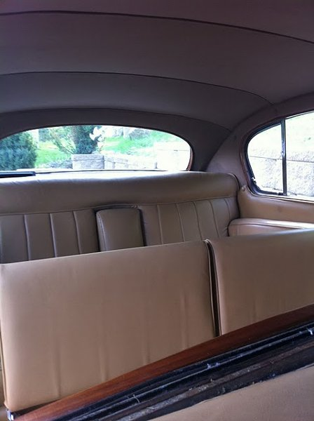 photo 11 of Excellent Limousine