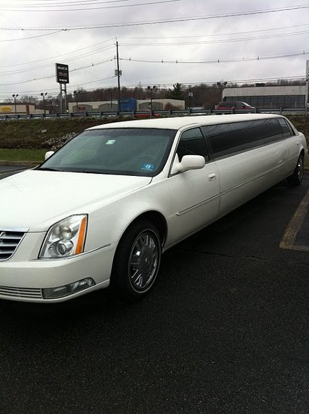 photo 16 of Excellent Limousine
