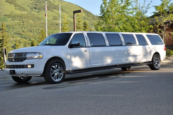 photo 51 of Excellent Limousine