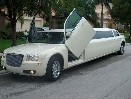 photo 59 of Excellent Limousine