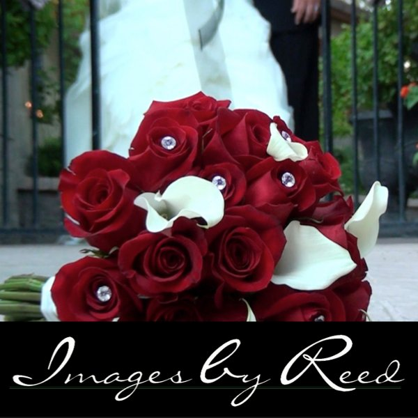 photo 1 of Images by Reed Videography