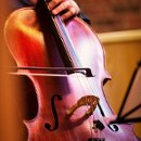 130x130 sq 1309303469585 cello
