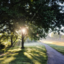 130x130 sq 1379441288655 golg morning mist