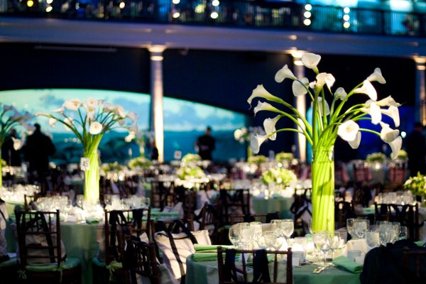 photo 8 of MagnaFlora Design | Events