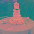 130x130 sq 1329328442342 cake2