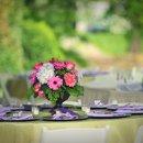 Caterer: South – Van Events Event Designer: Always Planned, LLC Floral Designer: Jeanie Gorrell Floral Design Reception Venue: Welcome Hall Cake Designer: martine's pastries Equipment Rentals: Purdon's rental Makeup Artist: Applied Cosmetic Services