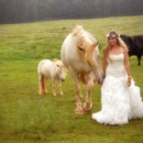 130x130 sq 1467758738498 bride1205