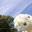 130x130 sq 1340830491930 weddingpictures3