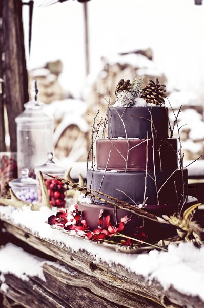 Winter Wedding Cakes, Wedding Cakes Photos by Rachel A ...