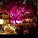 130x130 sq 1344445433750 uplighting