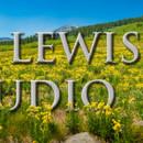 130x130 sq 1415924198944 meadow flowers 3270 46mp edit2