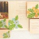 130x130 sq 1352242641098 hibiscussuitecolors