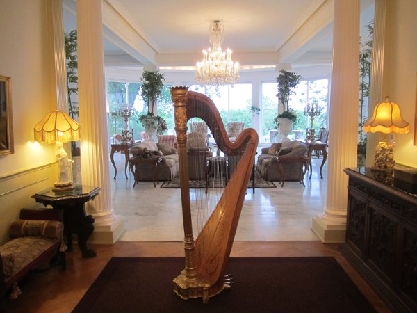 photo 6 of Harpist Ann Marie Liss