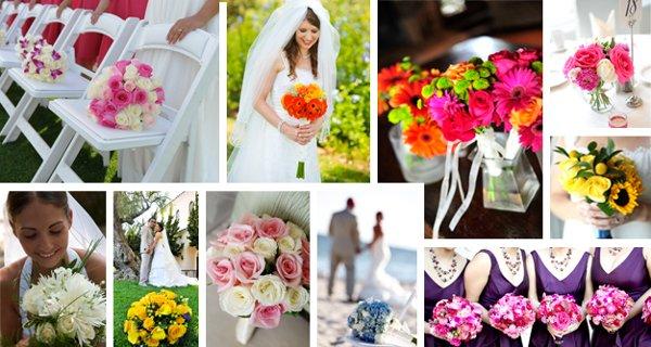 Wedding bug studios photos photography pictures greater wedding bug studios junglespirit Images