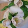 96x96 sq 1335563153602 tulip2