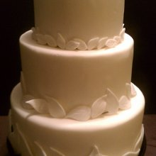 220x220 sq 1341893863731 ecofriendlyweddingcake