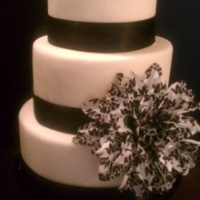 220x220 sq 1341893871870 coutureweddingcake