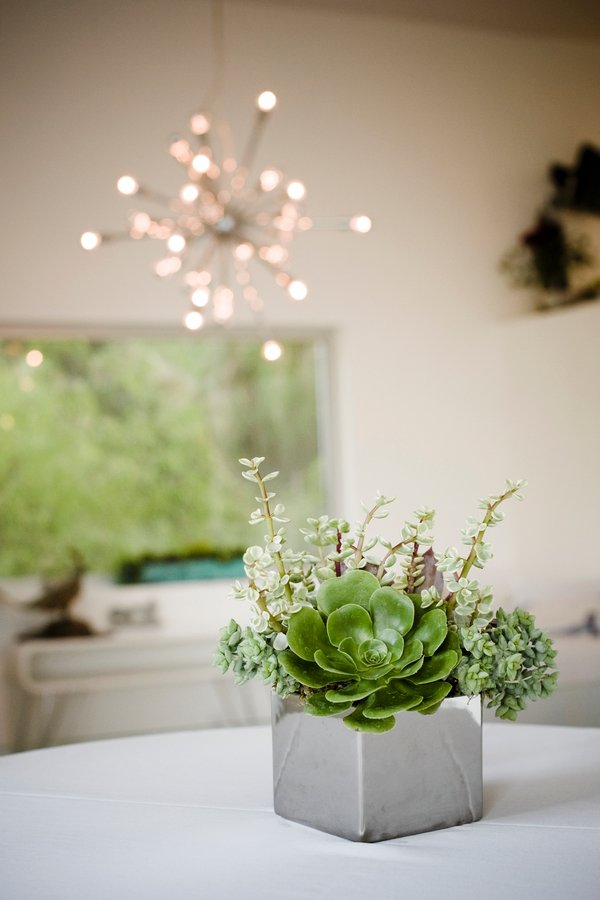 Modern Succulents Wedding Flowers Photos By Viera