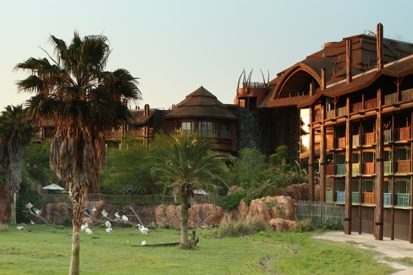 Disney's Animal Kingdom Lodge, Honeymoons by Disney's Animal Kingdom Lodge - Image 1 of 7