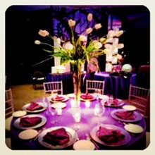 The Exquisite Soiree, Ltd photo