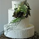 130x130 sq 1371017982436 rustic bird nest cake