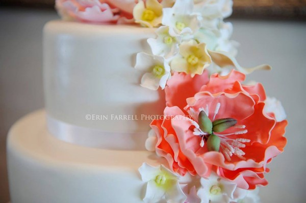 1375118315290 Emily Closeup Lewes wedding cake