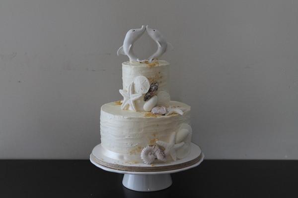 1392003403529 Img049 Lewes wedding cake