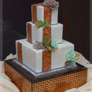 130x130 sq 1421279179285 tortisesucculentssquarewedding