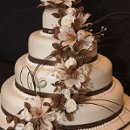 130x130 sq 1319897498520 weddingcakewithbrownribbons