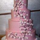130x130_sq_1319897668061-weddingcakewithsmallpinkflowers