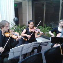Puget Sound Strings Ceremony Music Seattle Wa