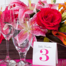 130x130 sq 1414458575919 carolyns hot pink wedding centerpiece setting beac