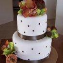 130x130_sq_1251223919049-cakebrowndots