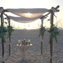 Bamboo arch with organza and flowers