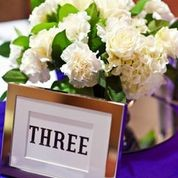 photo 14 of Special Moments Event Planning and Design