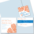 Coral Square Pocket Wedding Invitation: Our Coral Pocket Wedding Invitation has a lively, exotic feel, but isn't too over-the-top for an elegant seaside affair! Make this coastal wedding invitation your own by choosing your favorite paper, fonts and inks.