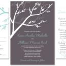 130x130 sq 1372819138504 winterberry wedding invitation with branches