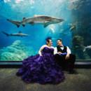 130x130_sq_1411431748677-adventure-aquarium-wedding-nj
