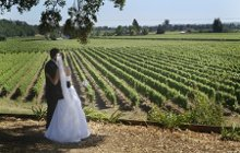 Healdsburg Country Gardens Weddings photo